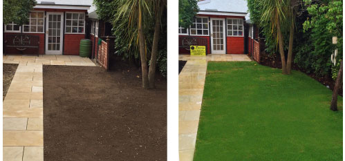 Artificial Grass Ewell